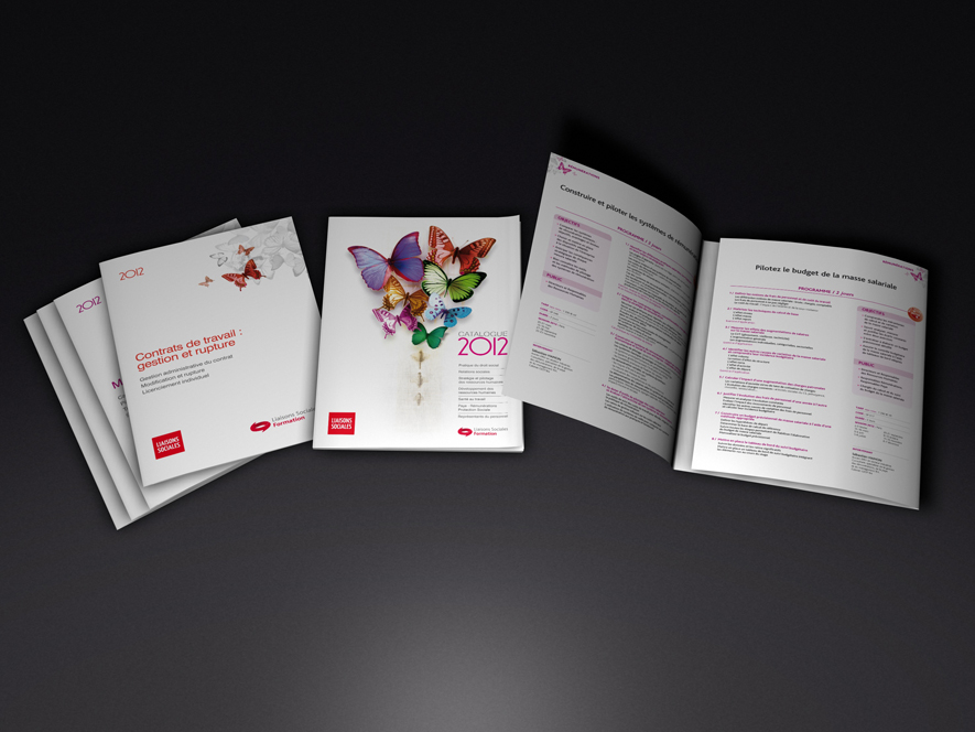 Catalogues formation Lamy sociale